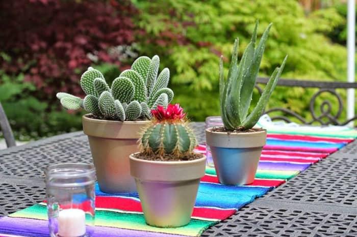 mesa-mexicana-inspiracoes