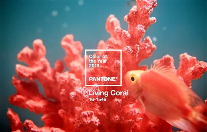 decoracao-coral-pantone